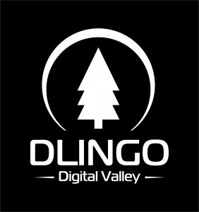 DLINGO DIGITAL VALLEY